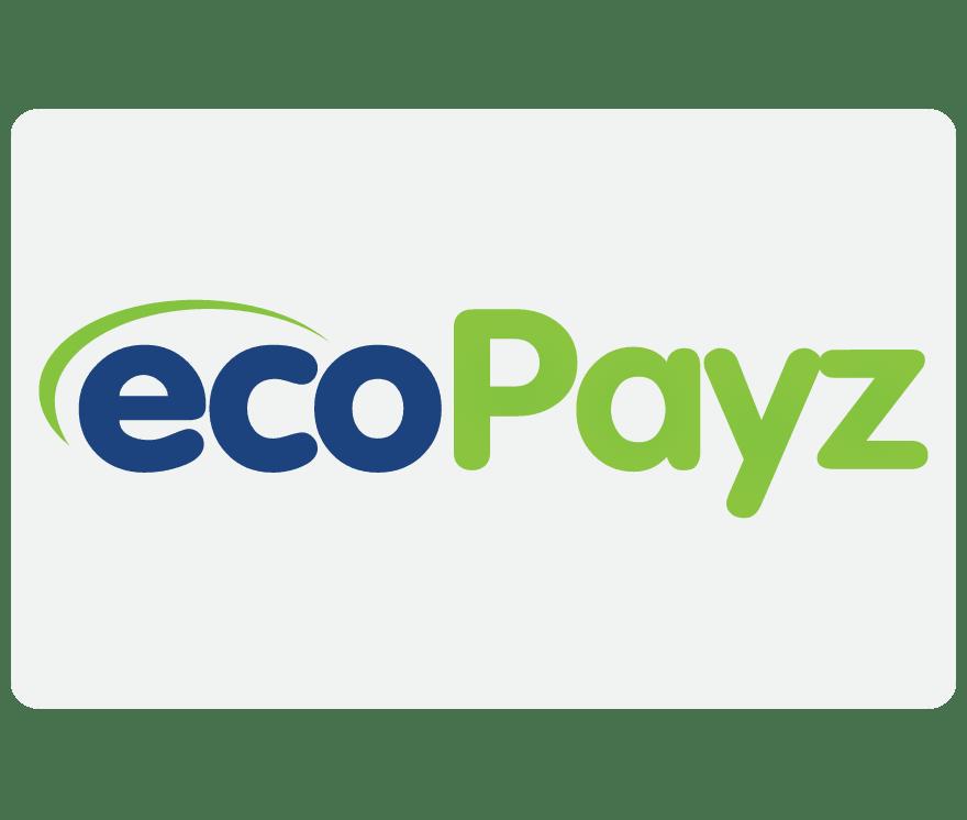 15 Casino En Vivo EcoPayz